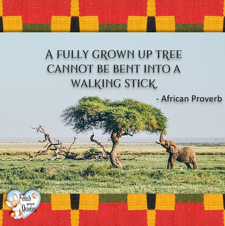 African Proverb, richly illustrated African Proverbs, beautiful African proverb, ancient wisdom, inspirational photo quote, African proverb photo quote, motivational quote, motivational photo quote, A fully grown up tree cannot be bent into a walking stick. - African Proverb