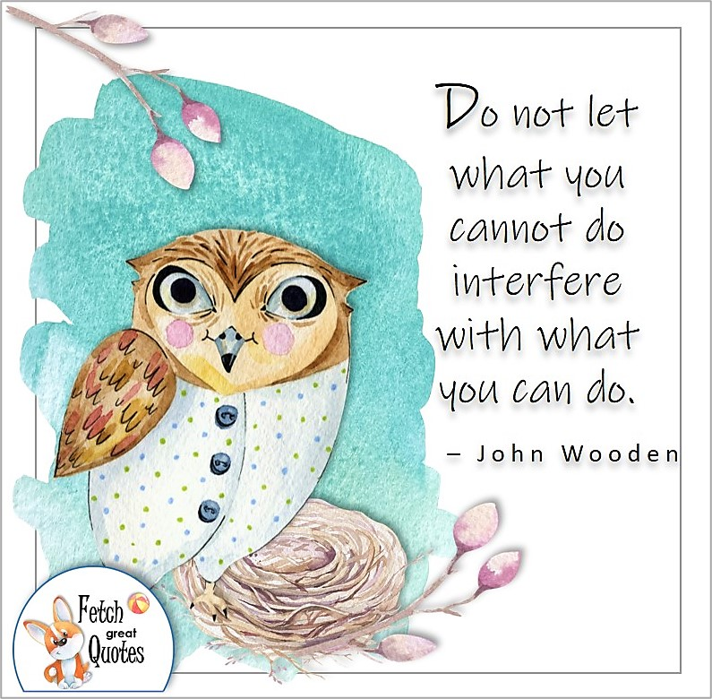 cute own, illustrated self-confidence quote, Do not let what you cannot do interfere with what you can do. , - John Wooden quote