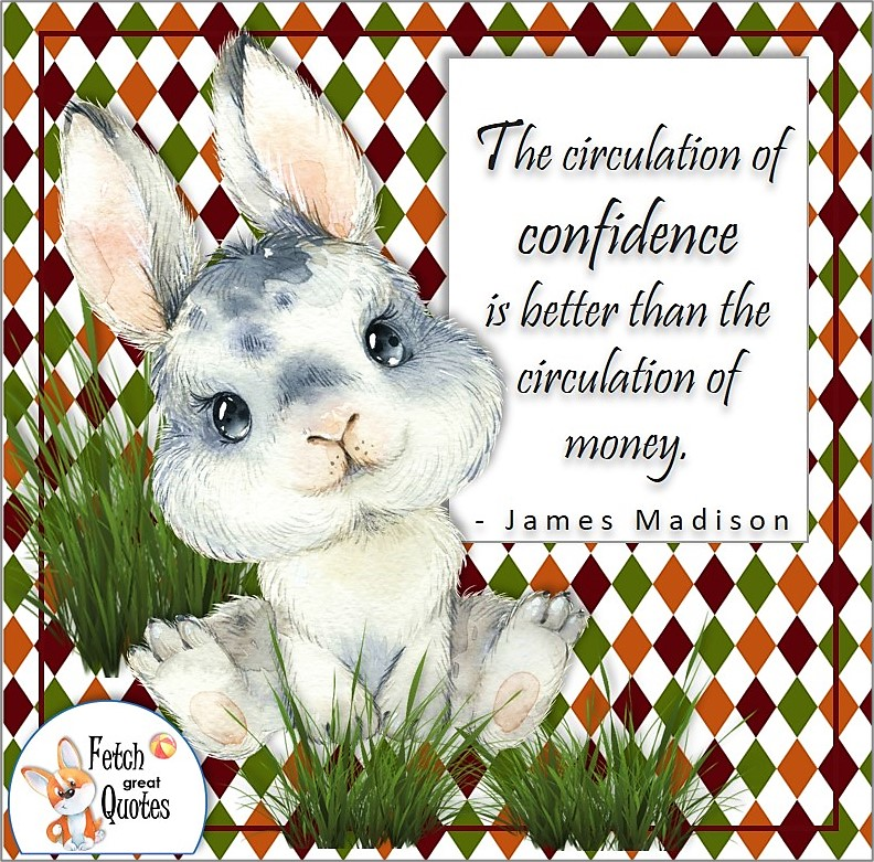 cute bunny rabbit, self-confidence quote, The circulation of confidence is better than the circulation of money. , James Madison quote