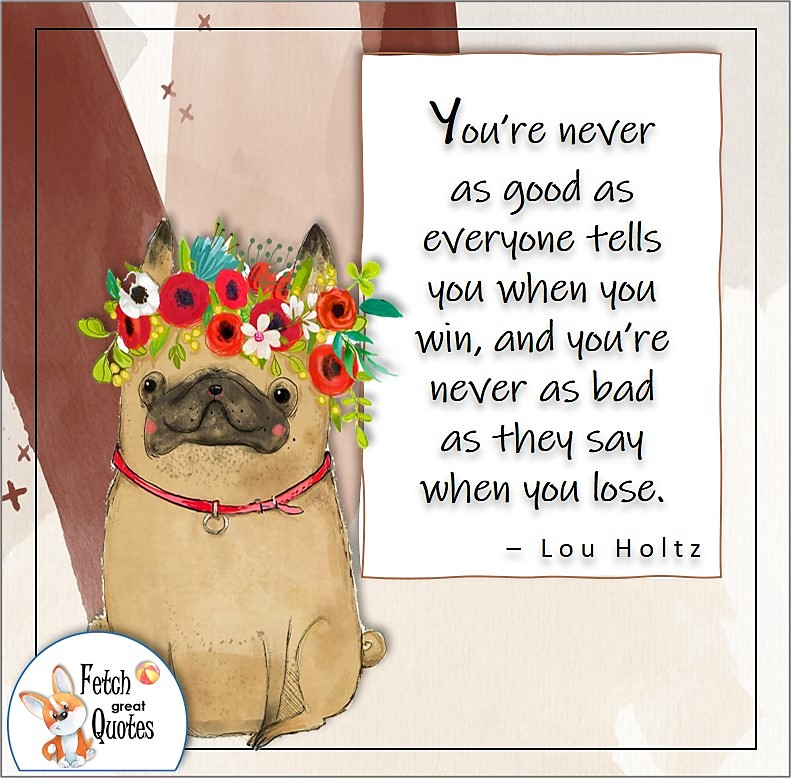 cute French Bulldog, illustrated self-confidence quote, You're never as good as everyone tells you when you win, and you're never as bad as they say when you lose. , - Lou Holtz quote