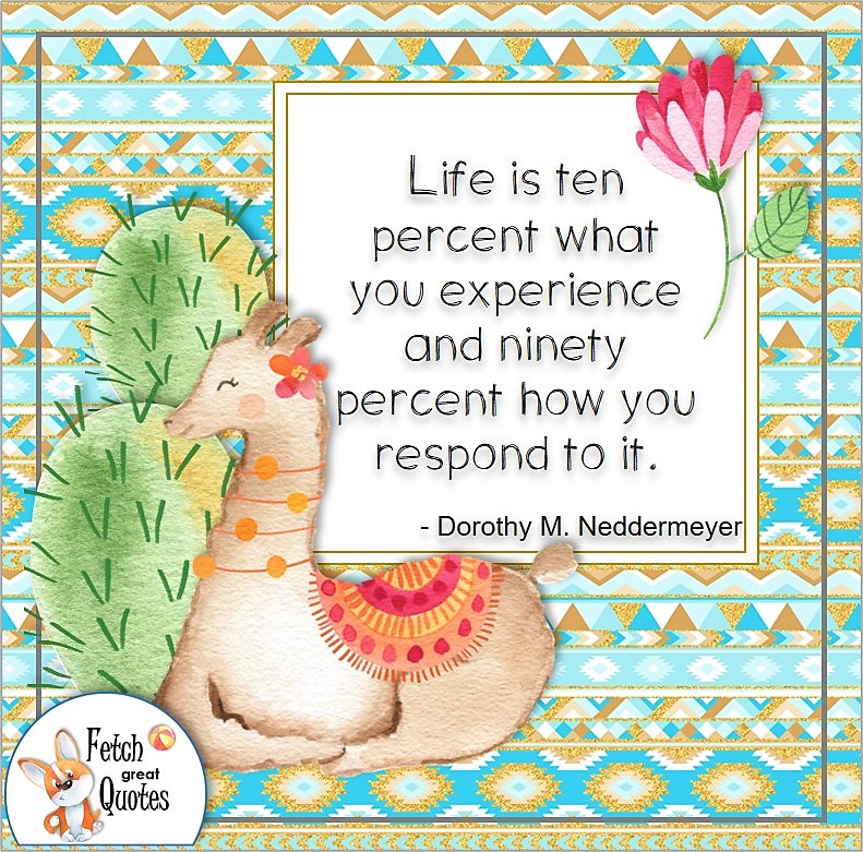 Cute colorful lama, bright blue pattern, self-confidence photo quote, Life is ten percent what you experience and ninety percent how you respond to it., - Dorothy M. Neddermeyer quote