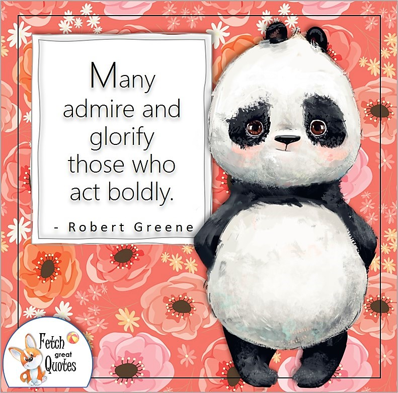 """cute panda bear, confidence quote, self-confidence quote, """"Many admire and glorify those who act boldly."""" , - Robert Greene quote"""