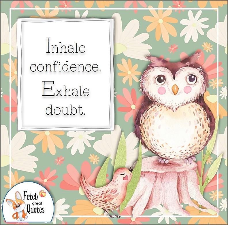 confidence affirmation, self-confidence affirmation, Inhale confidence. Exhale doubt., cure owl