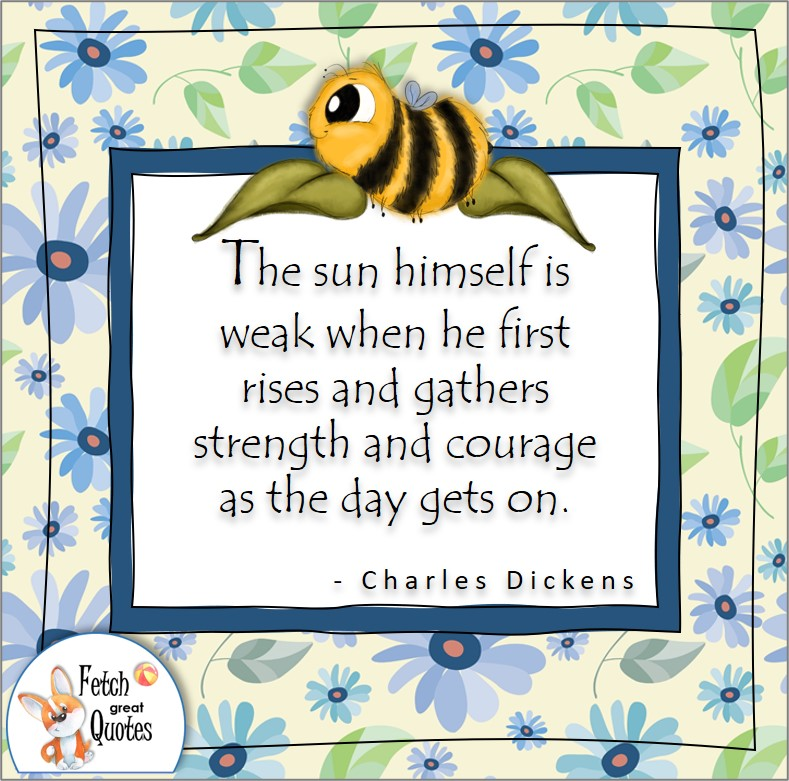 """cute bumble bee, blue flowers, cornflowers, confidence quote, self-confidence quote, """"the sun himself is weak when he first rises and gathers strength and courage as the day gets on."""" , - Charles Dickens quote"""