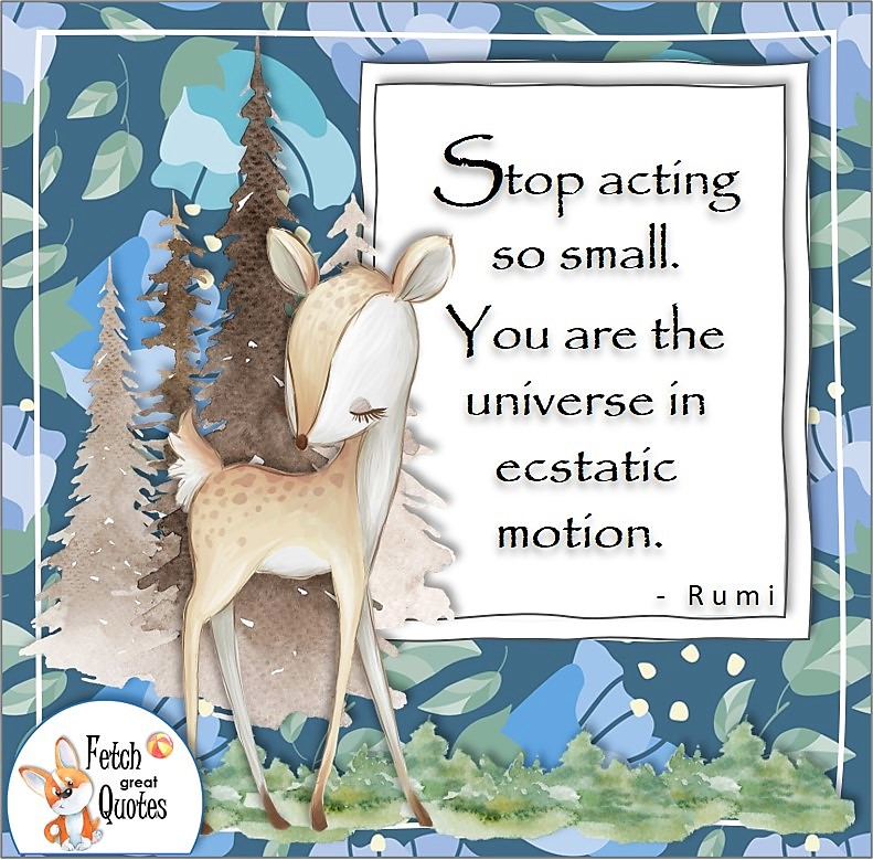 """cute deer, cute animal, modern blue flower background, confidence quote, self-confidence quote, """"Stop acting so small. You are the universe in ecstatic motion."""", - Rumi quote"""