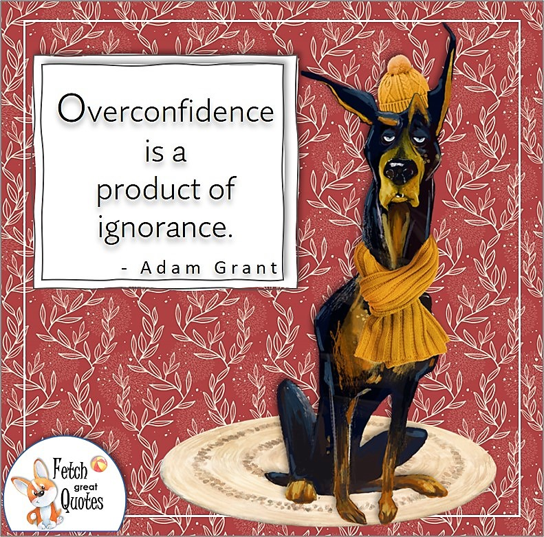 """funny dog, confidence quotes, self-confidence quotes, """"Overconfidence is a product of ignorance."""" - Adam Grant quote"""