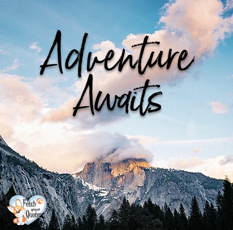 Adventure awaits, Inspirational Quotes, motivational quotes, inspirational photo quotes, inspirational photos, motivational photo quotes, success, success quotes, success photos, wildlife photos