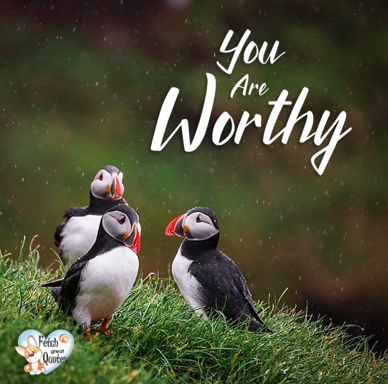You are worthy., Inspirational Quotes, motivational quotes, inspirational photo quotes, inspirational photos, motivational photo quotes, success, success quotes, success photos, wildlife photos