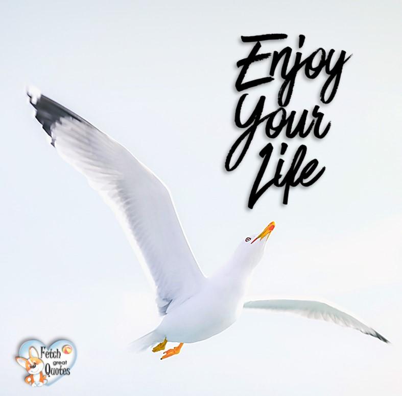 Enjoy your life. , Inspirational Quotes, motivational quotes, inspirational photo quotes, inspirational photos, motivational photo quotes, success, success quotes, success photos, wildlife photos