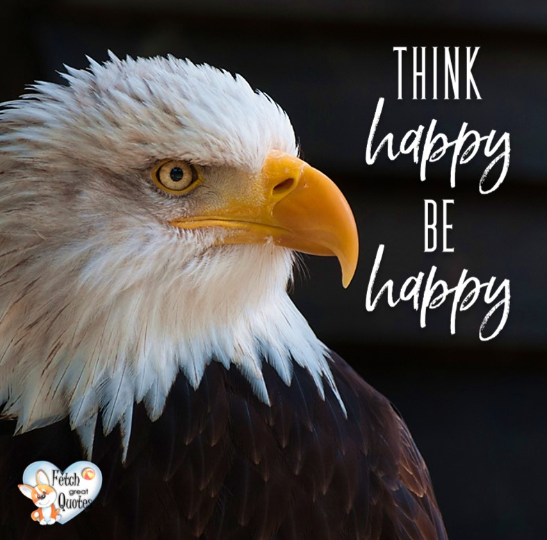 Think happy. Be happy. , Inspirational Quotes, motivational quotes, inspirational photo quotes, inspirational photos, motivational photo quotes, success, success quotes, success photos, wildlife photos