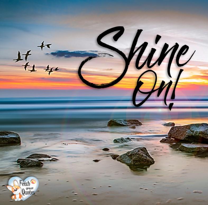 Shine on!, Inspirational Quotes, motivational quotes, inspirational photo quotes, inspirational photos, motivational photo quotes, success, success quotes, success photos, wildlife photos