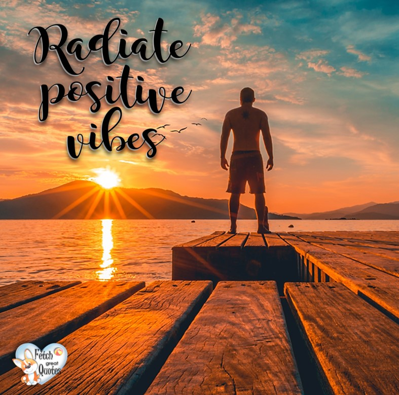 Radiate positive vibes., Inspirational Quotes, motivational quotes, inspirational photo quotes, inspirational photos, motivational photo quotes, success, success quotes, success photos, wildlife photos