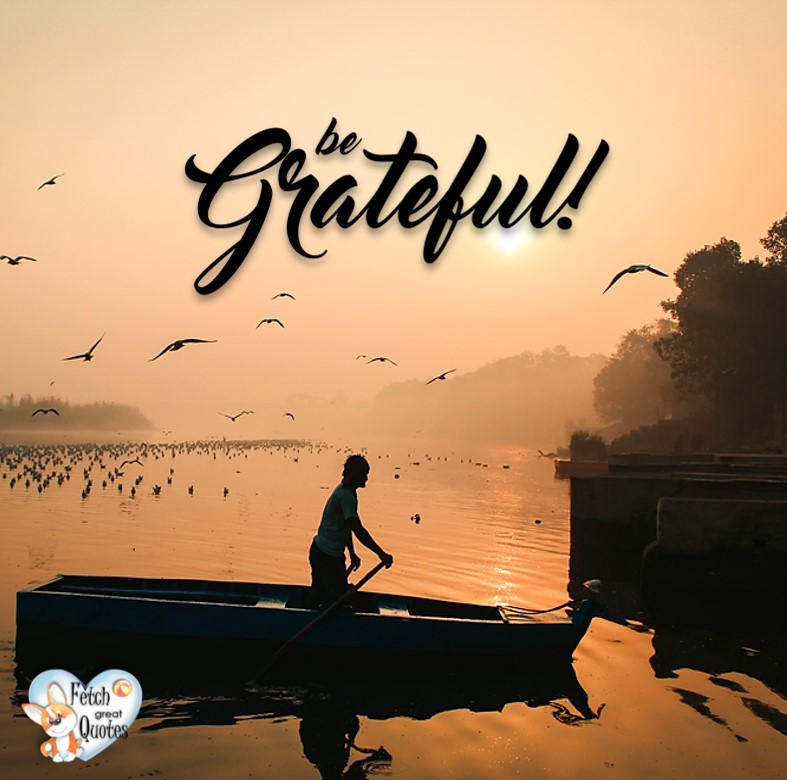 Be grateful, Inspirational Quotes, motivational quotes, inspirational photo quotes, inspirational photos, motivational photo quotes, success, success quotes, success photos, wild life photos