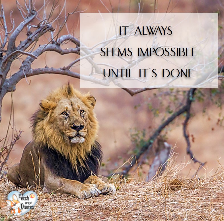 It always seems impossible until it's done., Inspirational Quotes, motivational quotes, inspirational photo quotes, inspirational photos, motivational photo quotes, success, success quotes, success photos, wildlife photos