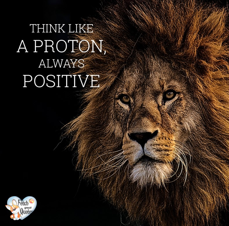 Think like a proton, always positive. , Inspirational Quotes, motivational quotes, inspirational photo quotes, inspirational photos, motivational photo quotes, success, success quotes, success photos, wildlife photos