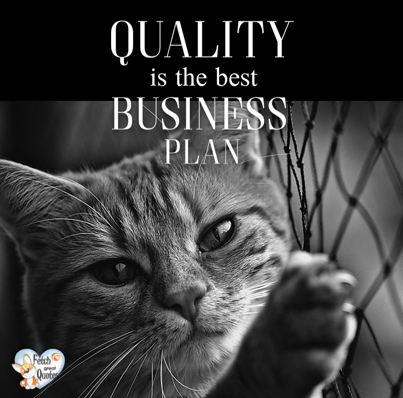 Quality is the best business plan. , Inspirational Quotes, motivational quotes, inspirational photo quotes, inspirational photos, motivational photo quotes, success, success quotes, success photos, wildlife photos