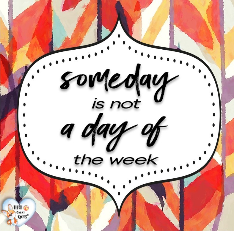 Someday is not a day of the week., Words of Wisdom, Wise Words, Practical advice, common sense, common sense advice, inspirational photos, inspirational words, motivational photos, motivational words, motivational photos quote