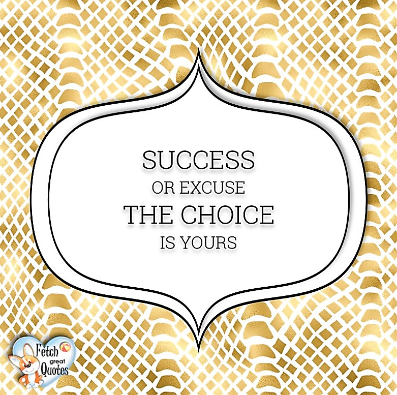 Success or excuse. The choice is yours., Words of Wisdom, Wise Words, Practical advice, common sense, common sense advice, inspirational photos, inspirational words, motivational photos, motivational words, motivational photos quote