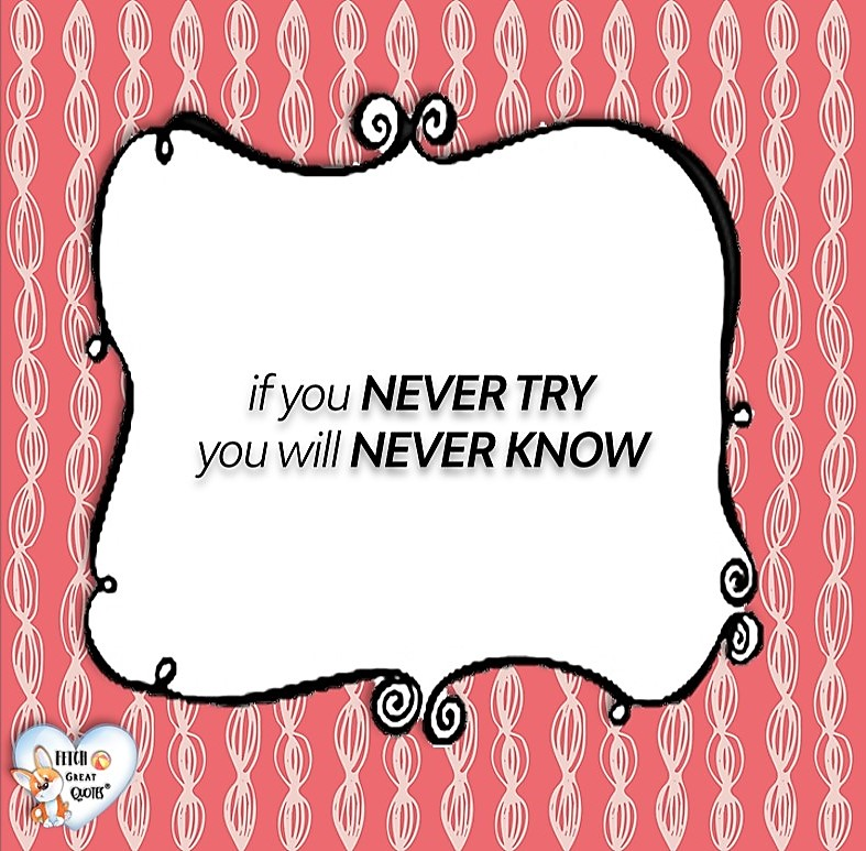If you never try, you will never know., Words of Wisdom, Wise Words, Practical advice, common sense, common sense advice, inspirational photos, inspirational words, motivational photos, motivational words, motivational photos quote