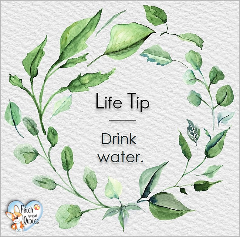Drink water., Life Tips, Life Tip quotes, Life Tip photos, Life Tip photo quotes, inspirational quotes, inspirational photo quotes, motivational quotes, motivational photo quotes, quality of life photos, quality of life quotes, encouraging words, words of encouragement