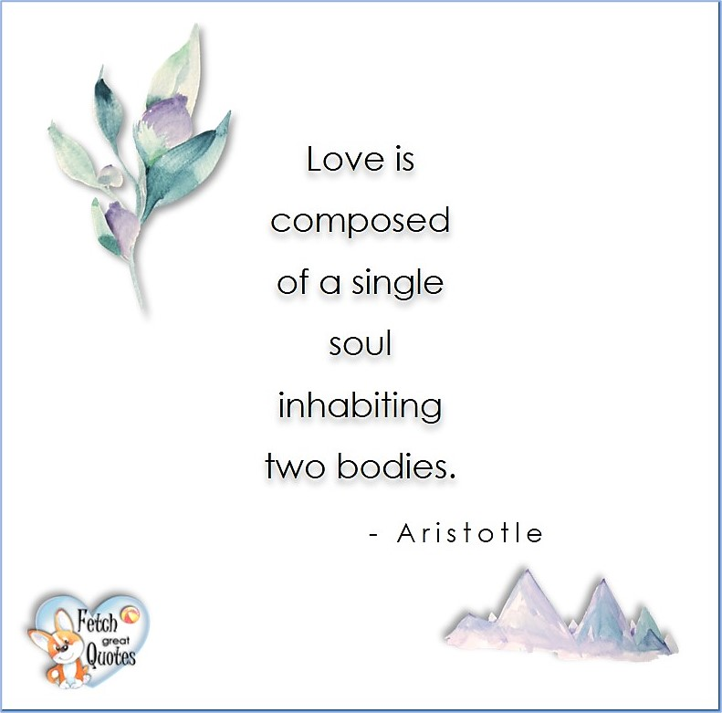 Love quotes, beautiful love quotes, love photos, love pics, Inspirational quotes, inspirational photos, inspirational pics, love is in the air, love is the way, daily dose of love, friendship, friendship quotes, quotes about friendship, Love is composed of a single soul inhabiting two bodies. - Aristotle