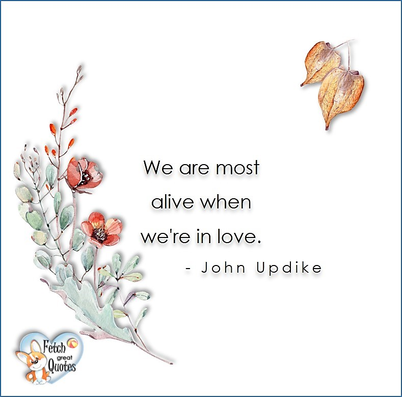 Love quotes, beautiful love quotes, love photos, love pics, Inspirational quotes, inspirational photos, inspirational pics, love is in the air, love is the way, daily dose of love, friendship, friendship quotes, quotes about friendship, We are most alive when we're in love. - John Updike