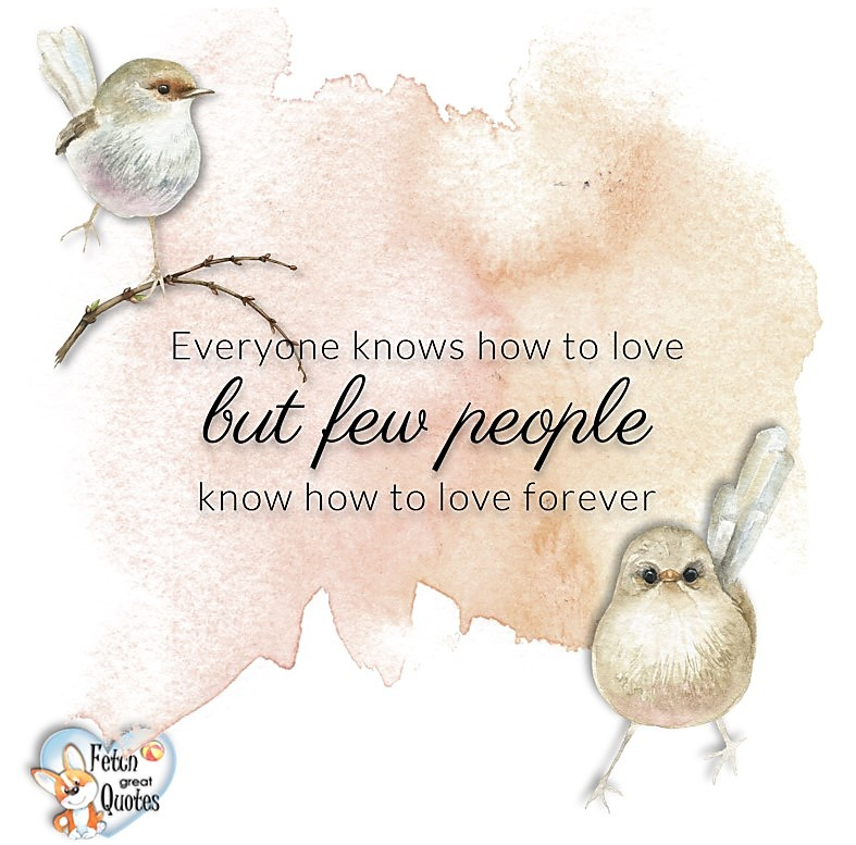 Love quotes, beautiful love quotes, love photos, love pics, Inspirational quotes, inspirational photos, inspirational pics, love is in the air, love is the way, daily dose of love, friendship, friendship quotes, quotes about friendship, Everyone knows how to love but few people know how to love forever