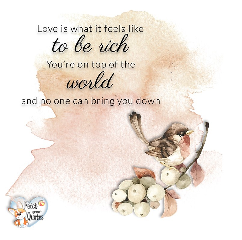 Love quotes, beautiful love quotes, love photos, love pics, Inspirational quotes, inspirational photos, inspirational pics, love is in the air, love is the way, daily dose of love, friendship, friendship quotes, quotes about friendship, Love is what it feels like to be rich. You're on top of the world and no one can bring your down.