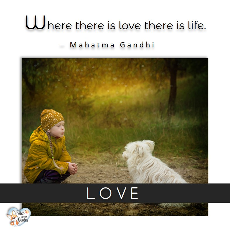Love quotes, beautiful love quotes, love photos, love pics, Inspirational quotes, inspirational photos, inspirational pics, love is in the air, love is the way, daily dose of love, friendship, friendship quotes, quotes about friendship, Where there is love there is life. - Mahatma Gandhi, Mahatma Gandhi quote