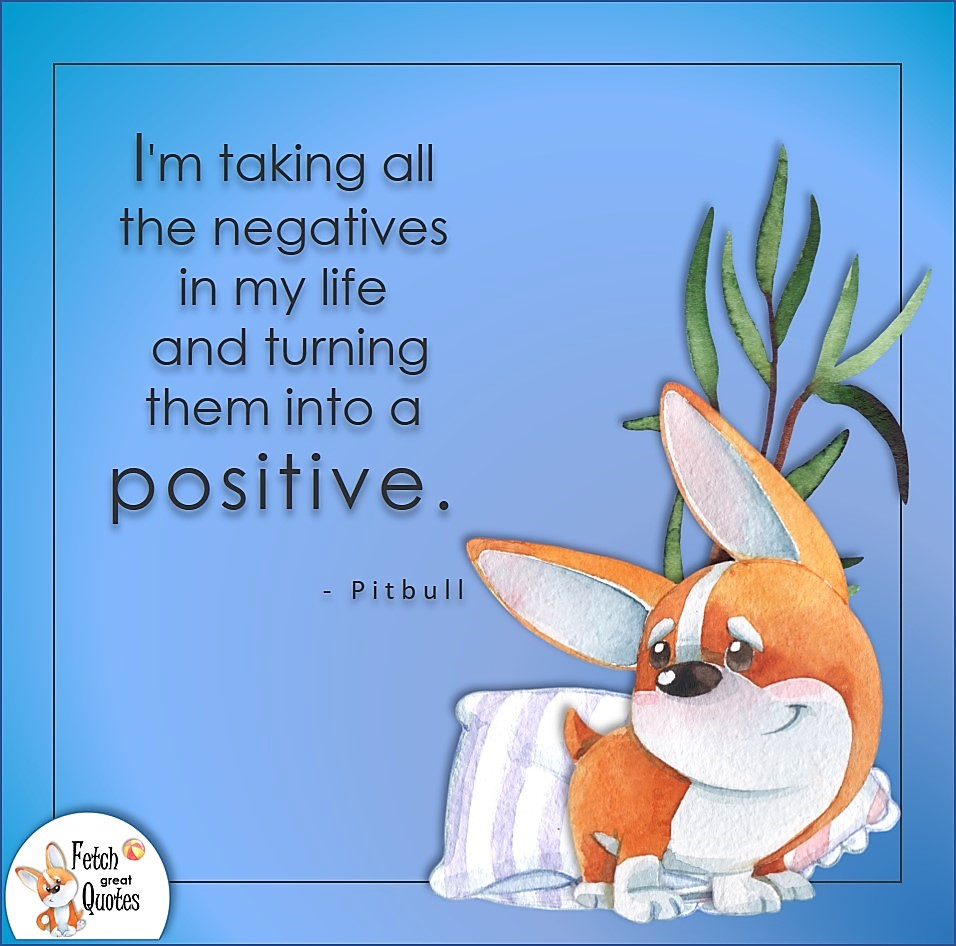 I'm taking all the negatives in my life and turning them into a positive. , Pitbull quote, Positive mindset, positive quotes, positive vibes, uplifting quotes, positive life, sage advice, positive thinking, positive quotes about life, words of encouragement, sage advice