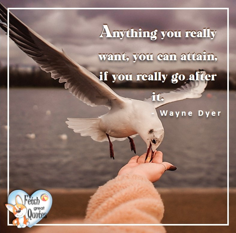 Wayne Dyer Quotes, Self-Development, Spiritual Development, Inspirational Quotes, Inspirational photo, Motivational Quotes, Motivational Photos, Anything you really want, you can attain, if you really go after it. - Wayne Dyer