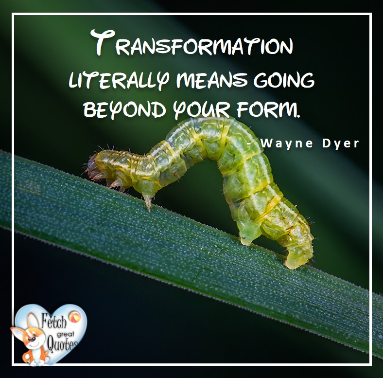 Wayne Dyer Quotes, Self-Development, Spiritual Development, Inspirational Quotes, Inspirational photo, Motivational Quotes, Motivational Photos, Transformation literally means going beyond form. - Wayne Dyer