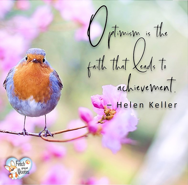 Optimism is the faith that leads to achievement. - Helen Keller, Leadership quotes, illustrated leadership quote, leadership photo quote
