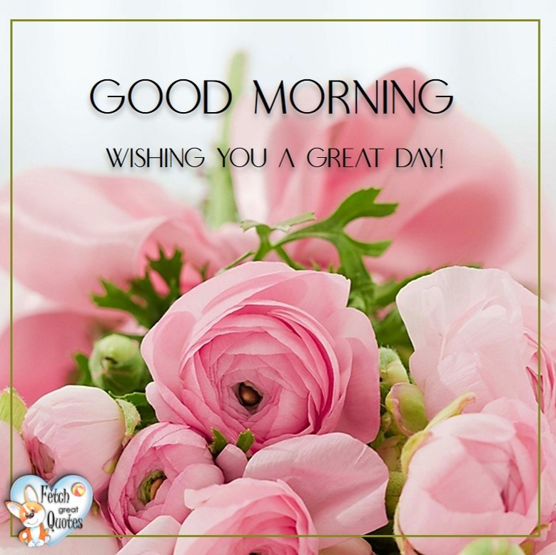 Pink roses, Wishing you a great day!, Spring Good Morning photo, Free Good Morning photo, Flower Photo, Spring Flowers