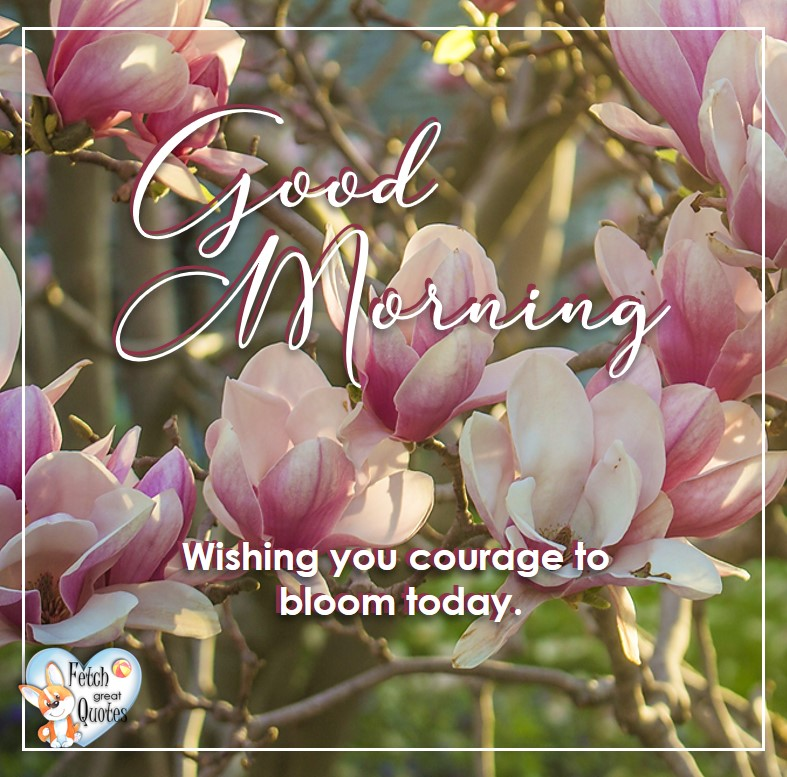 Spring Good Morning photo, Free Good Morning photo, Flower Photo, Spring Flowers, pink blossoms, pink dogwood flowers, Wishing you courage to bloom today