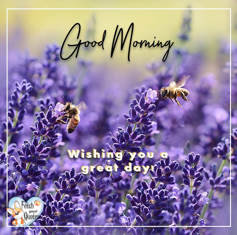 Spring Good Morning photo, Free Good Morning photo, Flower Photo, Spring Flowers, purple flowers, bumble bees, lavender, Wishing you a great day