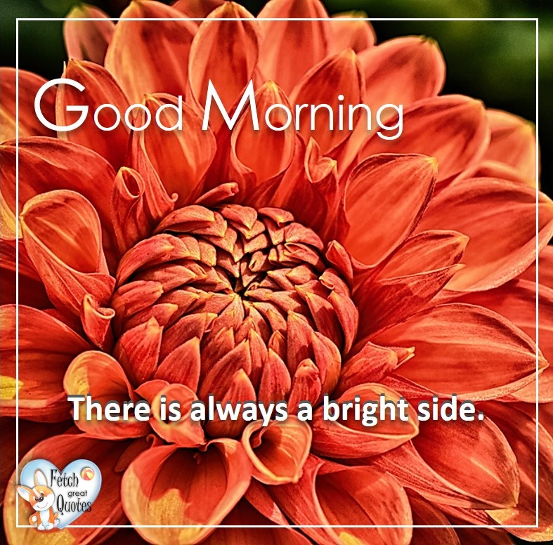 Spring Good Morning photo, Free Good Morning photo, Flower Photo, Spring Flowers, orange flower, orange zinnia, There is always a bright side.