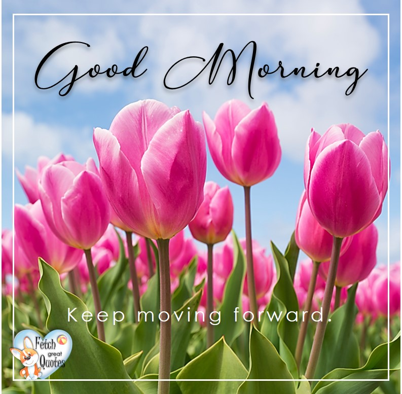 Spring Good Morning photo, Free Good Morning photo, Flower Photo, Spring Flowers, pink tulips, Keep moving forward