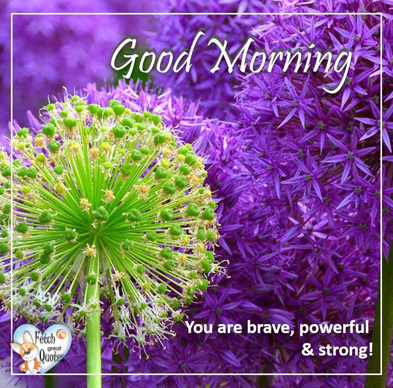 Spring Good Morning photo, Free Good Morning photo, Flower Photo, purple flowers, vibrant flowers, You are brave, powerful, & strong