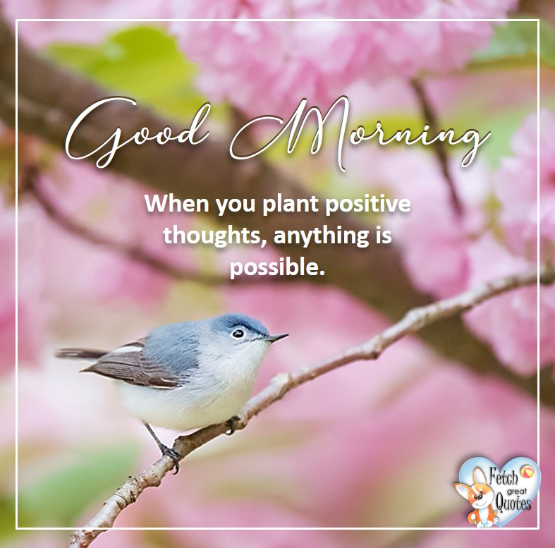 Spring Good Morning photo, Free Good Morning photo, Flower Photo, blue bird, When you plant positive thoughts, anything is possible